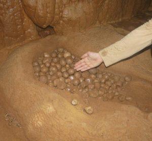 Les cavités laotiennes sont très riches en concrétionnements, notamment en perles. Photo Jean Camplo