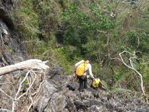 Prospection dans les tsynguis laotiens, à la recherche de nouvelles cavités. Photo Jean Camplo